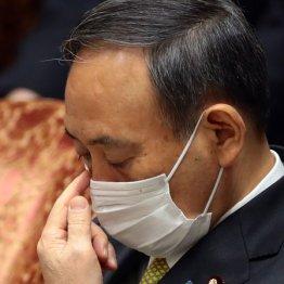 菅内閣支持率が軒並み急落…共同通信社-12.7P、JNN-11.5P