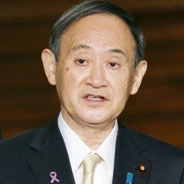菅首相がニタニタ薄笑い…ネット番組で国民に何も語らず