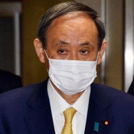 NW9の遺恨…菅首相が出演渋りNスペ政治特番が見合わせに?