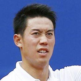 全豪テニスはコロナで2月開幕 日程ズラせない東京五輪は?