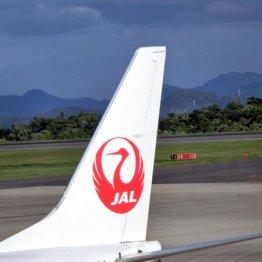 日本航空は「JALコロナカバー」を提供(写真はイメージ)/