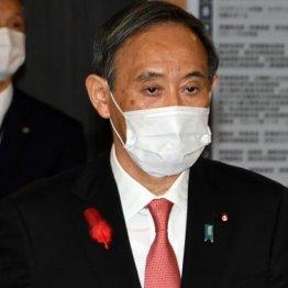 自民党下野の麻生政権に酷似 菅首相取り巻く3つのジンクス