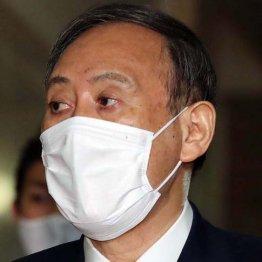 菅内閣に早くも黄色信号が点滅…自民党内の擁護勢力が消滅