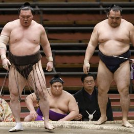 大相撲初場所の注目は土俵より白鵬と鶴竜の「去就と言動」