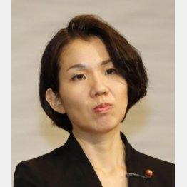 衆議院議員の頃の豊田真由子(C)日刊ゲンダイ