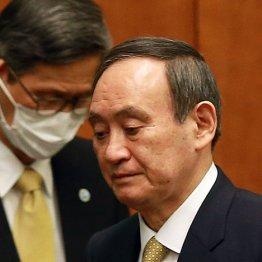 囁かれる「菅首相退陣」シナリオ 二階幹事長が見捨てる時