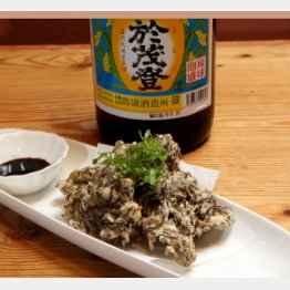 合う酒=泡盛、ビール、焼酎(C)日刊ゲンダイ