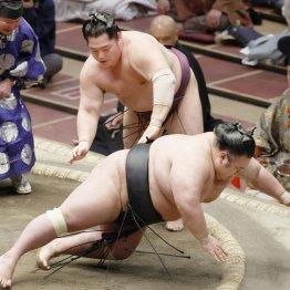 """貴景勝""""カド番M1""""で休場…押し相撲での綱とりは時間僅か"""