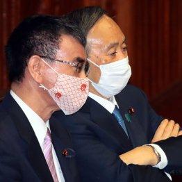 河野行革相なのにワクチン担当兼務 菅首相の真の狙いは