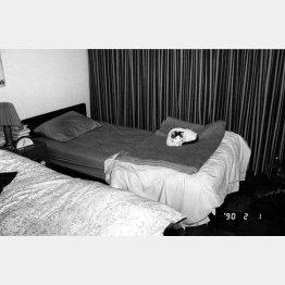 ベッドの上のチロ「センチメンタルな旅・冬の旅」から(1990年撮影)