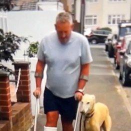 右足を骨折したら愛犬の足の調子まで悪くなり…そのワケは