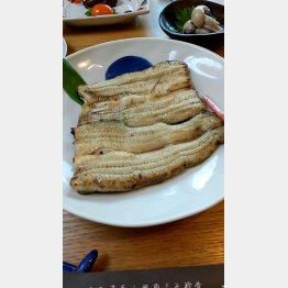 ワサビ醤油のほか、山椒みそ、柚子コショウで(C)日刊ゲンダイ