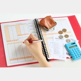 「家計簿をつけて節約」のキーポイントは…