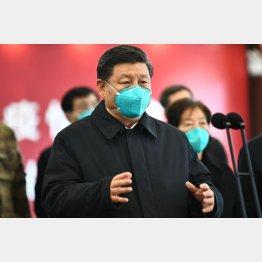 中国はコロナ制圧?(習近平国家主席=新華社/共同通信イメージズ)