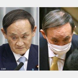 昨2020年1月の官房長官時代の会見(左)と26日の予算委での菅首相(C)日刊ゲンダイ
