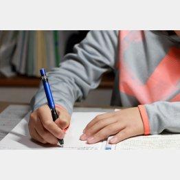 都市部では中学受験を選択する児童の割合は増えている