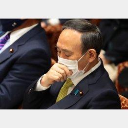 菅首相は防戦一方=4日、衆院予算委員会(C)日刊ゲンダイ