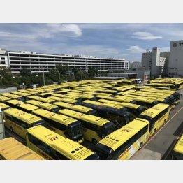 緊急事態宣言中の今、全便で運休…(はとバス提供)