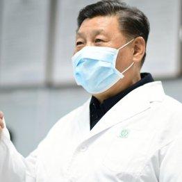 """ウイルスを真っ先に封じ込め""""中国モデル""""を世界に売り込む"""
