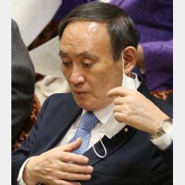 菅首相は「他人事のふり」(C)日刊ゲンダイ
