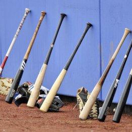 MLBが自治体の要望退けスプリングトレーニング突入の裏側