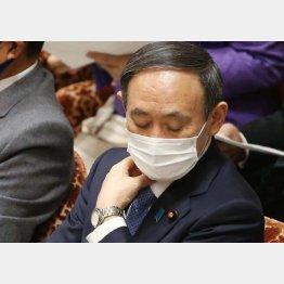 菅首相、黙して語らず(C)日刊ゲンダイ