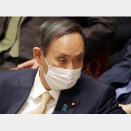 税金の無駄遣い(菅首相)/(C)日刊ゲンダイ