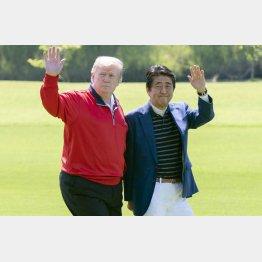 ますます境遇が似てきた安倍晋三前首相とトランプ前米大統領(C)JMPA