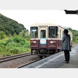 天浜線の「マリメッコ」車両(C)日刊ゲンダイ