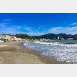 ミーティングの合間に海岸を散歩できる
