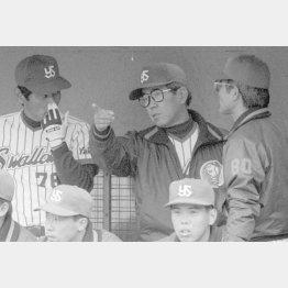 就任1年目の1990年3月、采配を振る野村監督(央)。右は丸山コーチ、左は伊勢コーチ(C)共同通信社