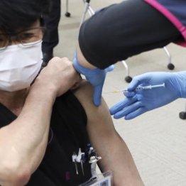 """ワクチン""""垂直刺し"""" なぜ日本は半世紀以上避けてきたのか"""