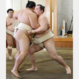 合同稽古で御嶽海(手前左)と相撲を取る鶴竜(代表撮影)