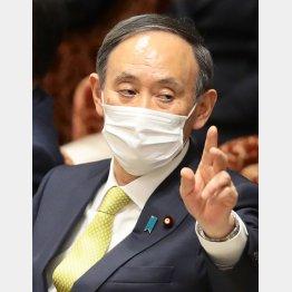 総務省を牛耳る菅首相の寵愛を一身に受け…(C)日刊ゲンダイ
