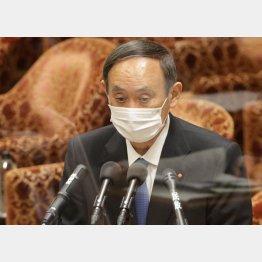 東北新社は「漠然としか分からない」とデタラメ(22日、衆院予算委で答弁する菅首相)/(C)日刊ゲンダイ