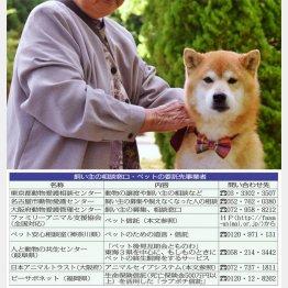 元気なうちに…(写真はイメージ)/(C)日刊ゲンダイ