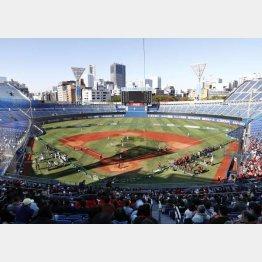 横浜スタジアムは東京五輪では野球とソフトボールの会場に(C)共同通信社