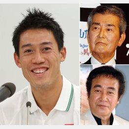 テニスの錦織圭選手(左)と渡哲也(右上)・渡瀬恒彦兄弟(C)日刊ゲンダイ