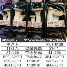 ホクト×秋川牧園 家族で囲む鍋に欠かせない食品会社を比較