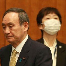 日本の民主主義にとって百害あって一利なしの内閣広報官