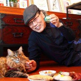 吉田類さんは愛猫が晩酌相手「猫に育てられたようなもの」