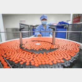 中国の申し入れについて、日本は事前に話を聞いていない(中国の新型コロナウイルスのワクチン「シノバック」)/(C)新華社/共同通信イメージズ