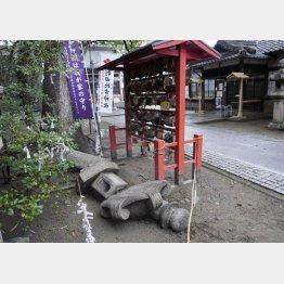 M4.6の地震があった2月15日の和歌山市の様子(C)共同通信社
