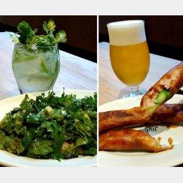 ベーコンと香味野菜のサラダ(左)とゴルゴンゾーラチーズが入った春巻き(C)日刊ゲンダイ