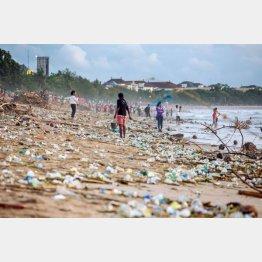大量のプラごみが漂着するインドネシア・バリ島の海岸(Maxim・Blinkov氏/Shutterstock.com提供)