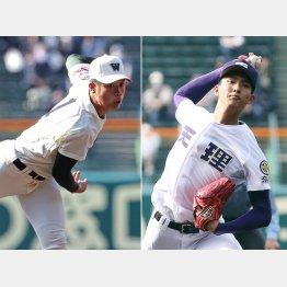総合点の市和歌山の小園健太投手(左)と素材型の天理の達孝太投手(C)日刊ゲンダイ