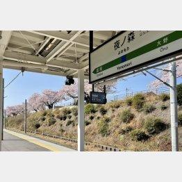 2021年4月1日、現在の夜ノ森駅(写真)藤原亮司