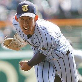 センバツ本塁打減は「投高打低」が結論 好投手が多かった