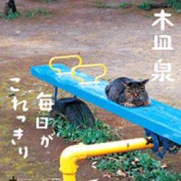 早川いくを(著作家・書籍デザイナー)