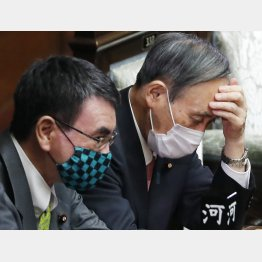 この国のコロナ対策は末期症状…(菅首相と河野ワクチン担当相=左)(C)日刊ゲンダイ
